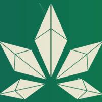 大麻の流通をブロックチェーンによって管理【Paragon(パラゴン)】